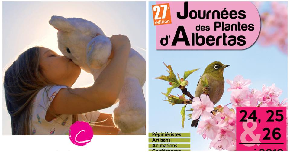 Le Point rose au Salon des Plantes d'Albertas