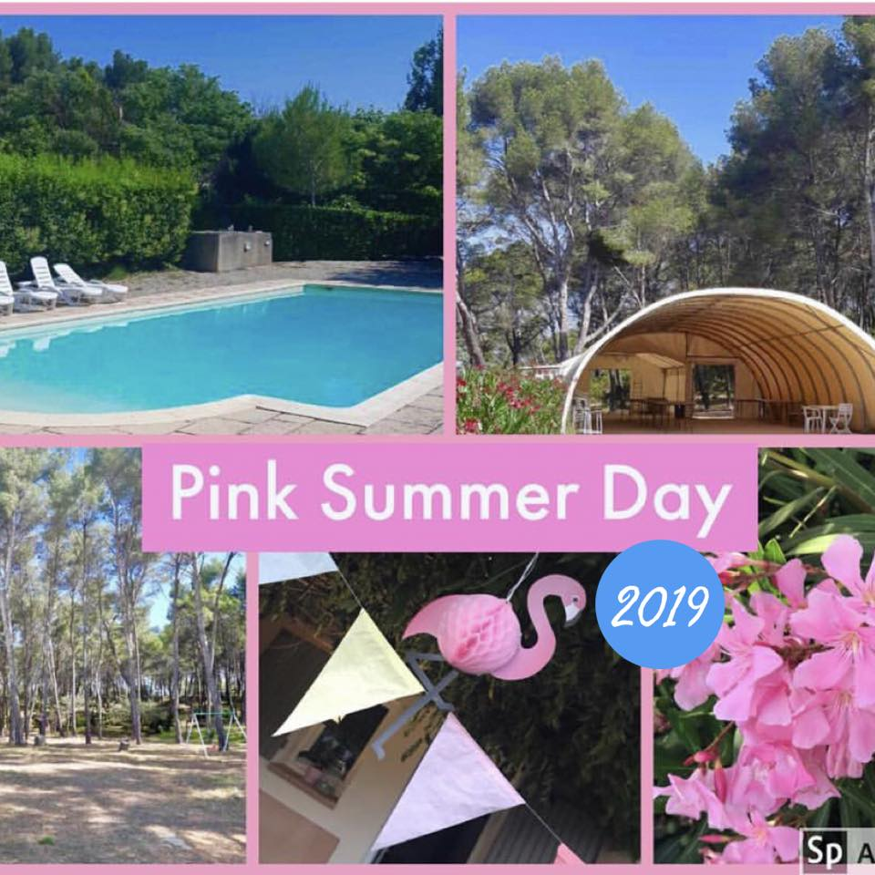 Pink Summer Day le Point rose