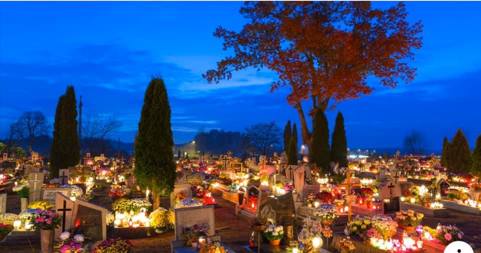 Toussaint 2019, Le Point rose a illuminé les cimetières !