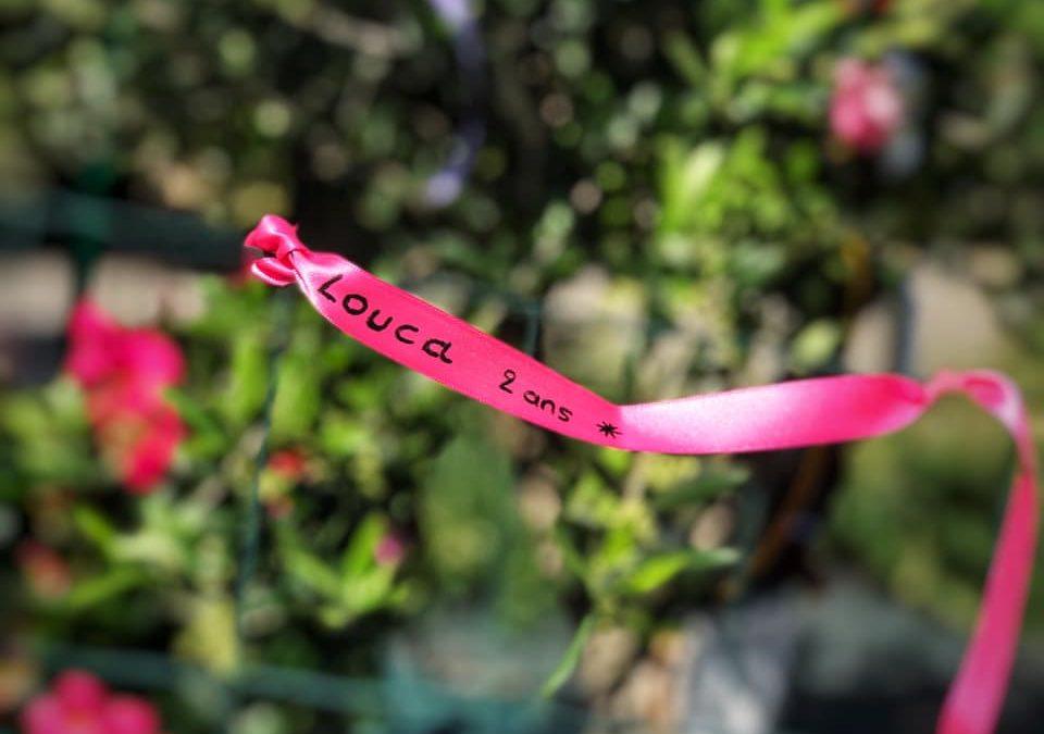 Des rubans d'amour en hommage à Louca