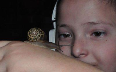 Des escargots pour Maxime 5 ans